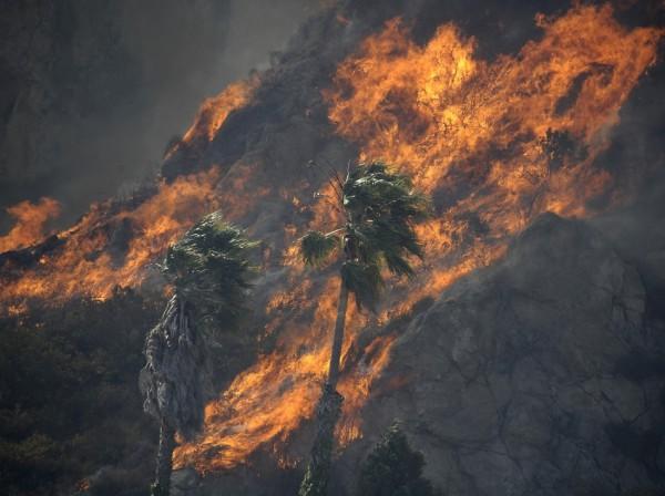california-wildfire-malibu